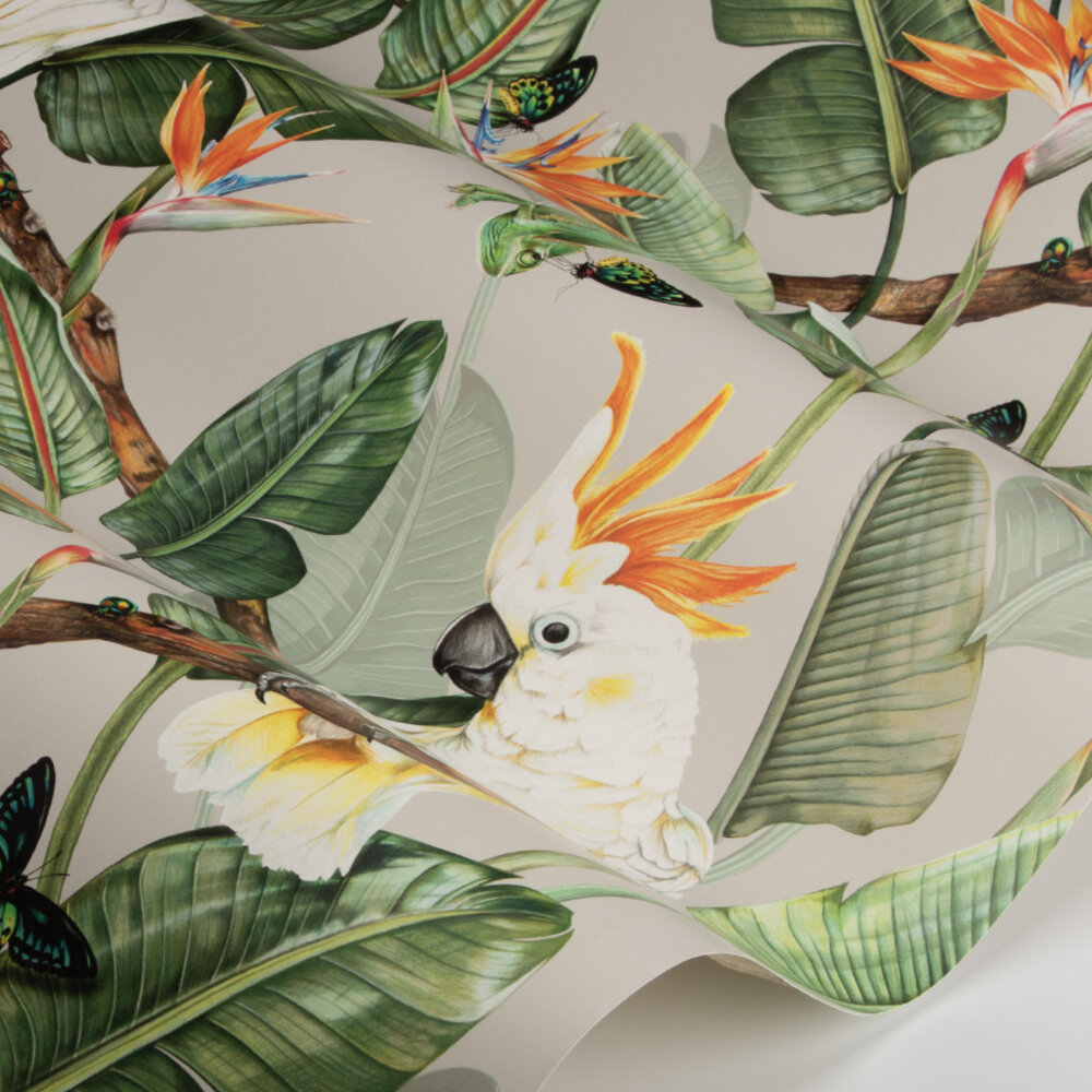 Birds of Paradise Wallpaper - Limestone - by Isabelle Boxall