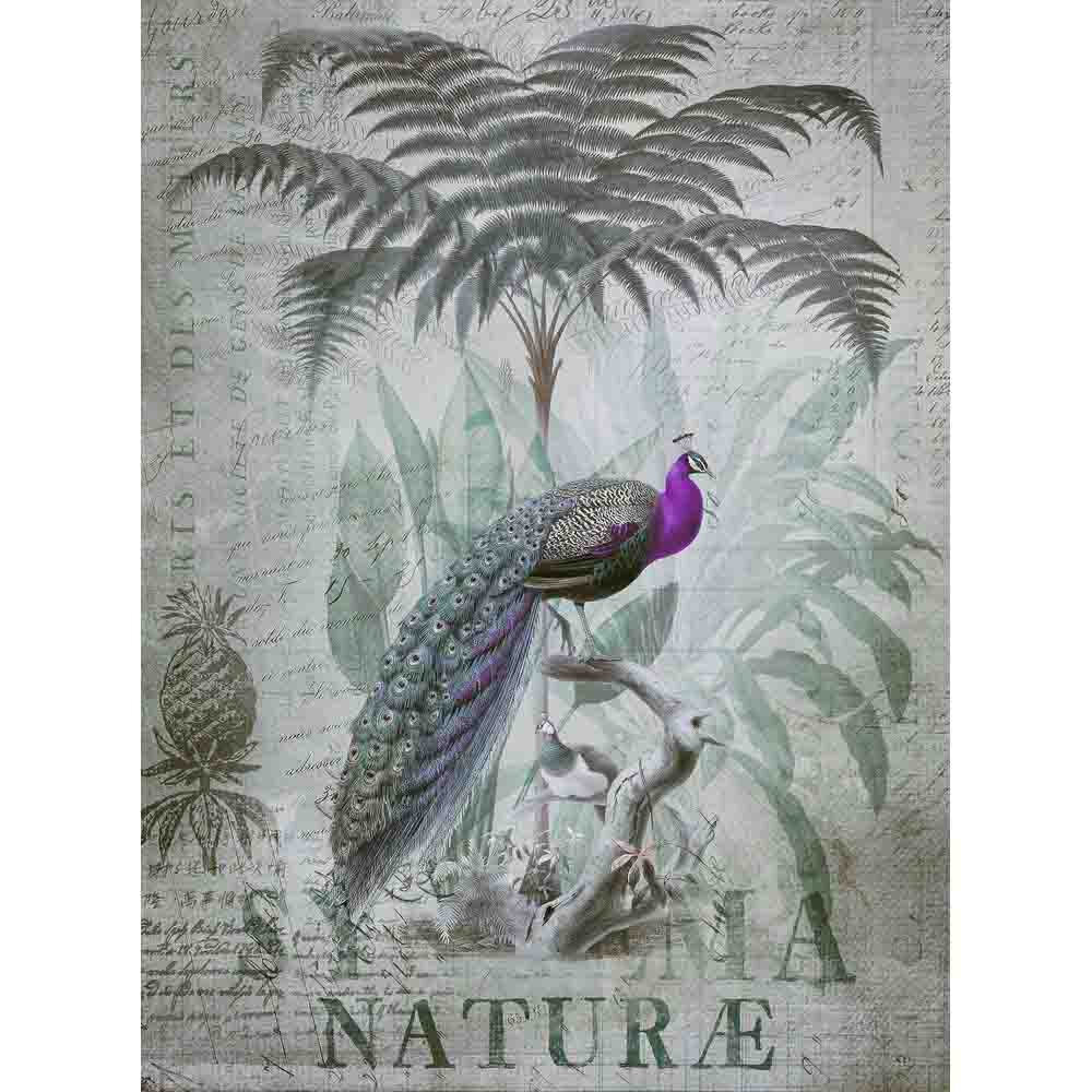 Peacock Jungle Mural - Grey - by ARTist