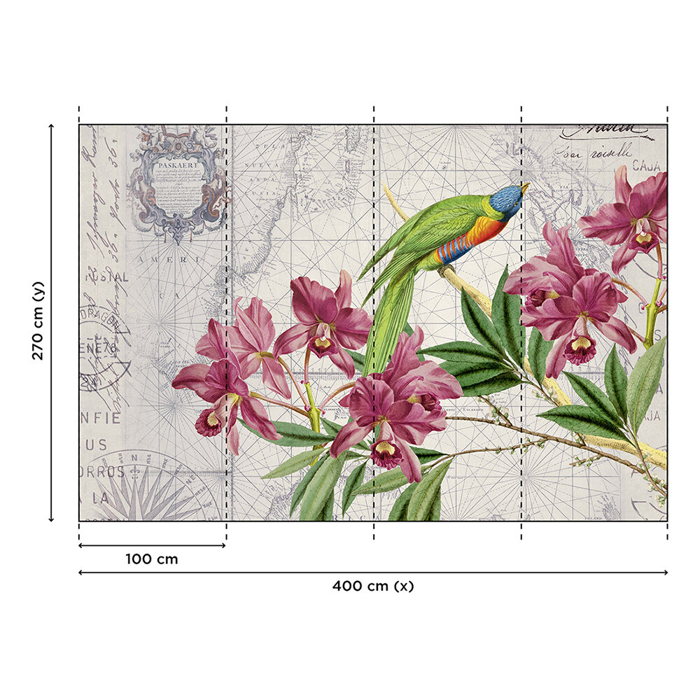 Bird Discovery Mural - Green - by ARTist