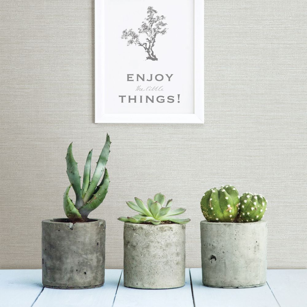 Agave Wallpaper - Grey - by A Street Prints