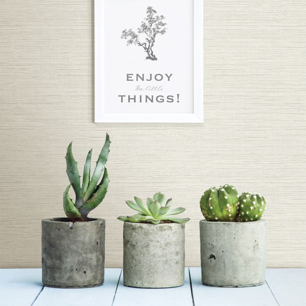 Agave Wallpaper - Oat - by A Street Prints
