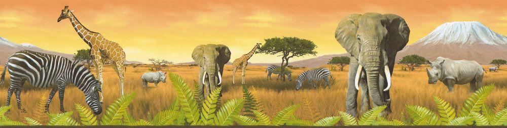 Safari Border - Multi-coloured - by Albany