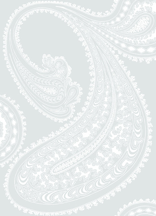 paisley fabric wallpaper amp gift wrap  Spoonflower